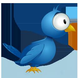 3251106353_5e938c592f_o_Twitter_Logo_Bug-Eyed_Bird_250