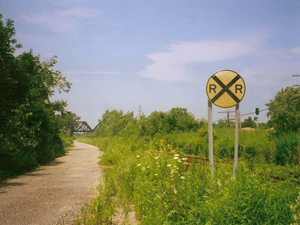 Blasdell Junction - RR Sign Amidst Nature_300