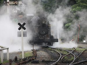 1261463_38725556_puffing_old_train_stock_xchng_royalty_free_300