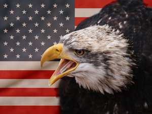 1212772_65845378_flag_eagle_stock_xchang_royalty_free_300